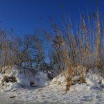 Winter Zingst